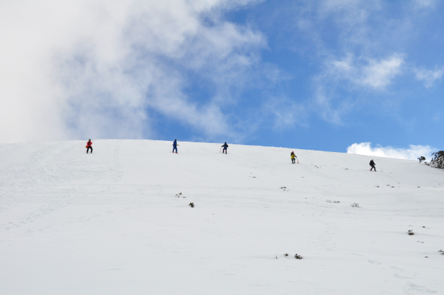 Search pattern using avalanche transceivers down the slope