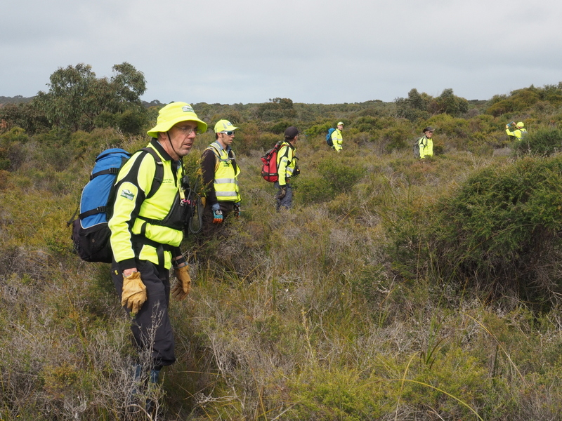 BSAR Searchers at Aireys Inlet