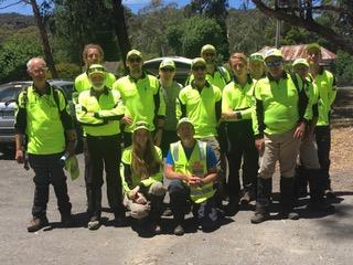 BSAR search team at Halls Gap