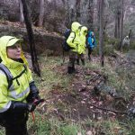 Mount Buffalo search
