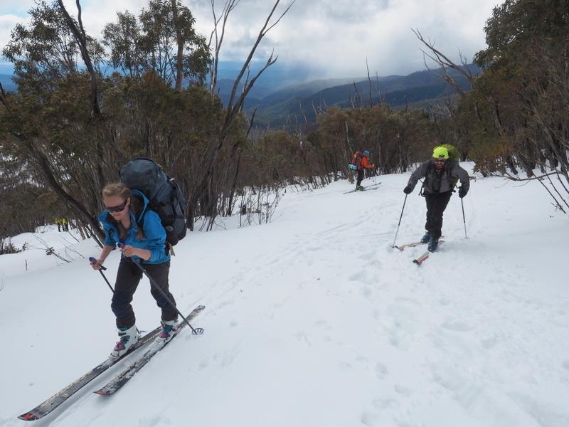 2017 Bogong search - skiing up Eskdale Spur