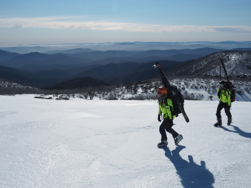 2017 Bogong search - searching en route to Cleve Cole hut